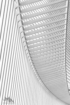 Lignes by Muriel Auvray on 500px