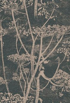 Cow Parsley wallpaper by Cole & Son