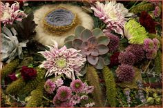 Barwy Ogrodu: Florystyka jesienna...