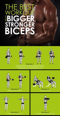 Build your biceps with this workout routine of 5 exercises!