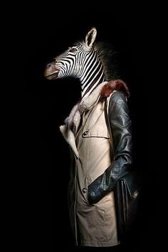 Miguel Vallinas dresses up animals for World Animal Day. - Fashion & Art