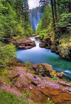 What a beautiful serene scene