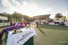 Hippodrome, Oise, Courses, Images, Dolores Park, Table Decorations, Travel, Beginning Sounds, Tourism