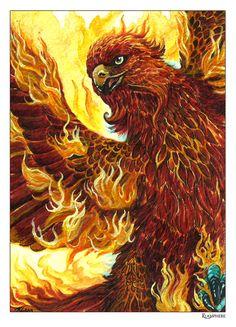 Phoenix by Plaguedog.deviantart.com on @DeviantArt