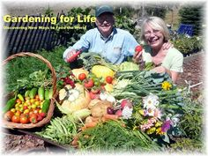 Get Great Gardening Advice With These Handy Tips *** A special product just for you. Planting Vegetables, Organic Vegetables, Growing Vegetables, Straw Bale Gardening, Backyard Vegetable Gardens, Grow Organic, Organic Gardening Tips, Grow Your Own Food, Gardening For Beginners