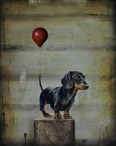 Dog Breeds Little .Dog Breeds Little Cow Paintings On Canvas, Miniature Dog Breeds, Dog Breeds Little, Homemade Dog Toys, Dog Grooming Shop, Cute Dog Collars, Arte Dachshund, Best Dog Toys, Interactive Dog Toys