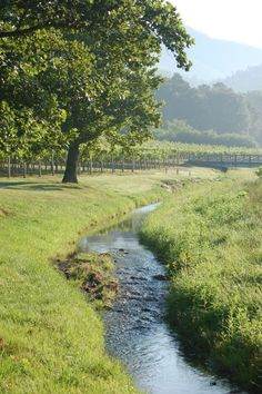 """Rural Properties – A Sustainable Life """"Off the Grid"""" Creek pictured looks similar to the one that traverses the property. landscape Rural Properties – A Sustainable Life """"Off the Grid"""" Country Farm, Country Life, Country Living, Country Roads, Country Estate, Wine Country, Off The Grid, Esprit Country, Beautiful World"""