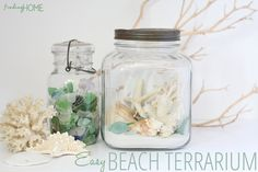 Great ideas for how to make a beach terrarium from @A T The Picket Fence Guest post by @宇 张宇 Home