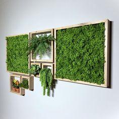 Open Plan Kitchen Living Room, Home Decor Kitchen, Diy Home Decor, Living Room Plants Decor, Conservatory Design, Moss Wall Art, Wall Design, Pub Design, Green Life
