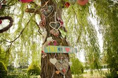 The tree of love - the couple asked their friends and family to each bring a heart and attached them to the tree they got married under.