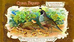Buy San Francisco Quail Raisin Grape Wine Fruit Crate Label Art ...