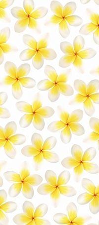 Fios 01 Life 10 Wallpaper - Wall & Decò