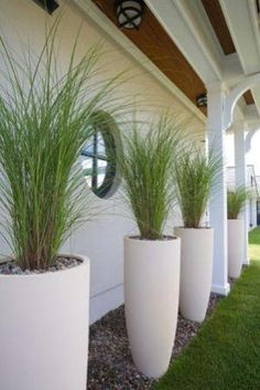 LANDSCAPE : PLANTERS ~~ Really like this vertical, elongated arrangement. Grasses are light and wispy. Cl LANDSCAPE : PLANTERS ~~ Really like this vertical, elongated arrangement. Grasses are light and wispy. Pretty framing of the house. Back Gardens, Outdoor Gardens, Tall Planters, White Planters, Tall White Planter, Tall Potted Plants, Planters Flowers, Large Garden Planters, Vertical Planter