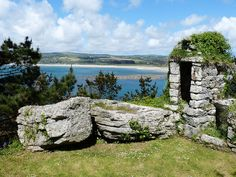 When staying in our Cornish cottages make sure you visit the delicious Rock Oyster Festival.
