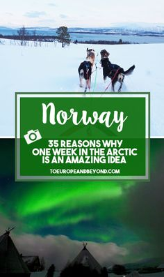 Because I'm a little bit insane and because I'm definitely a creature of the north, I decided to spend a week in the Norwegian Arctic this winter. Here are my favourite photos from the trip. http://toeuropeandbeyond.com/one-week-northern-norway-favourite-photos/ #Norway #travel