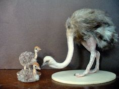 Dollhouse Miniature Female Ostrich and Chicks  *Handsculpted*