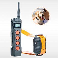 AETERTEK Top 919C-1 Remote Dog Training Collar Pet Shock Control for Stubborn or Serious Dogs Beep/Vibration/Shock E-Collar Designed for professional Hunter Dog Trainer 1000M Range Review https://dogtrainingcollar.co/aetertek-top-919c-1-remote-dog-training-collar-pet-shock-control-for-stubborn-or-serious-dogs-beepvibrationshock-e-collar-designed-for-professional-hunter-dog-trainer-1000m-range-review/