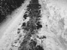 Pedestrians carve out the side walks prior to the rival of snow plowers and rock salt. The Rival, Pedestrian, Walks, Sidewalk, Carving, Snow, Rock, Photography, Outdoor