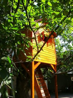 Rhea - the treehouse 6 Year Old, One Tree, Bucharest, Treehouse, Play Houses, Building, Treehouses, Tree Houses, Buildings