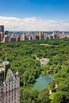 A picnic in Central Park is always Lazy Sunday approved!
