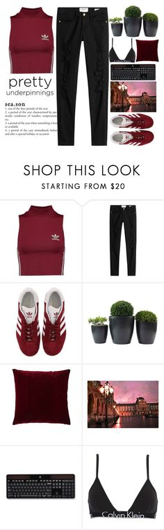 """How can you control others, if you do not know how to control yourself?  © Bernard Verbert. Encyclopedia of relative and absolute knowledge"" by holy-k15 ❤ liked on Polyvore featuring adidas Originals, Frame, adidas, Aviva Stanoff, Logitech, Calvin Klein Underwear and prettyunderpinnings"