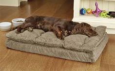 Give your canine plush coziness and the support of memory foam in this smart Orvis dog bed.