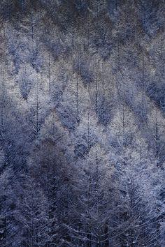美瑛、北海道、絶景/Biei, Hokkaido, Japan