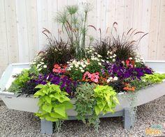Um jardineiro criativo sabe como ninguém reaproveitar peças e materiais que estão parados. Como esse barco aqui usado para o cultivo de flores e folhagens.