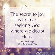 Ann Voskamp, One Thousand Gifts #joy #doubt