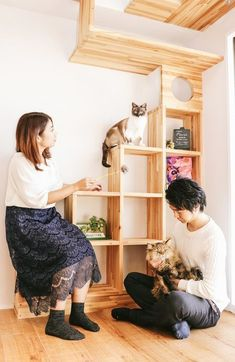 Cat House Plans Cat furniture and shelving! Transitions to high shelves for the cats Cat House Plans, Cat House Diy, Cat Wall Shelves, Shelves For Cats, Book Shelves, Diy Cat Tree, Cat Perch, Cat Playground, Cat Condo