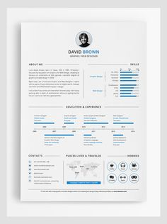 Simple Infographic Resume Design