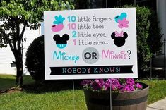 31 trendy ideas baby shower ideas for girs disney gender reveal Baby Shower Prizes, Baby Shower Cookies, Baby Shower Invites For Girl, Baby Shower Games, Baby Boy Shower, Baby Shower Invitations, Baby Showers, Shower Party, Shower Cake