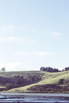hill. millon bay.