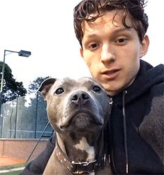Tom Holland puppy kisses #handsome #hot #sexy #celebrity #hunk