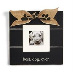 "Honor man's best friend with double matted distressed wood frame and """"best. dog. ever."""" printed sentiment.  Hangs on wall or stands with easel.  Details Size:         10"""" x 10"""""