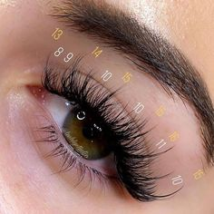 Premade volume fan eyelash extensions: ✅ 3D/4D/5D/6D/8D/10D ✅ Easy to apply ✅ Time-saving ✅ Thickness: 0.07 mm ✅ Length: 8-15mm ✅ Worldwide Shipping Check it out here 👇👇 Natural Fake Eyelashes, Perfect Eyelashes, Best Lashes, Eye Makeup Art, Eyeshadow Makeup, Eyelash Extensions Salons, Volume Lash Extensions, Whispy Lashes, Eyelash Sets
