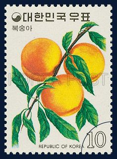 Postage Stamps of Fruit Series, Peach, Fruits,Orange, Yellow, Green, 1974 05 30, 과실 시리즈 (제2집), 1974년05월30일, 895, 복숭아, postage 우표