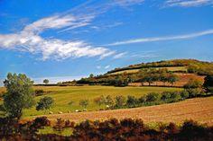 Herbststimmung Vineyard, Explore, Outdoor, Europe, Outdoors, Vine Yard, Vineyard Vines, Outdoor Games, The Great Outdoors