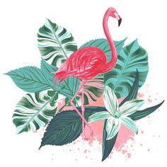 FLAMINGO PLANTS » Animais