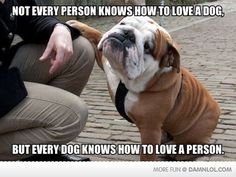 Dogs Are Full Of Love
