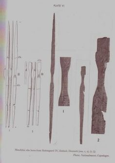 Some of the best known and well-preserved early prehistoric bows come from Scandinavia. These bows were recovered from the site of Holmega...