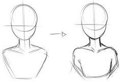 collar bone 1-3