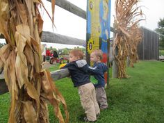 Long Acre Farms, Macedon, NY. Family fun, a winery and moonlight corn mazes. Don't miss this family destination during the fall.