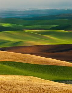 The Palouse region is a beautiful area full of rolling hills that have a rich farmland history. The hills are asymmetrical and offer some of the most beautiful, peaceful, lush green landscape available. Image Nature, All Nature, Beautiful World, Beautiful Places, Beautiful Pictures, Natur Wallpaper, Landscape Photography, Nature Photography, Outdoor Photography