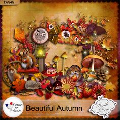 Beautiful Autumn by Rieneke Designs at scrap from France - august 2014 (40% off for few days...)