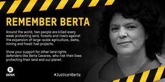 #Justice4Bera
