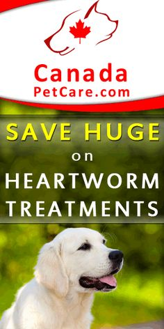 Cheapest Pet Supplies Online -- until October 31, 2015