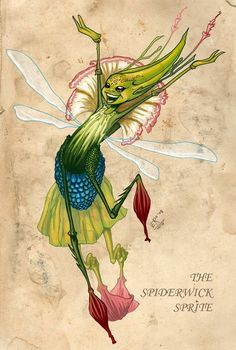 Finished Spiderwick sprite by on DeviantArt Forest Creatures, Woodland Creatures, Magical Creatures, Fantasy Creatures, Arte Elemental, Spiderwick, Kobold, Insect Art, Mythological Creatures