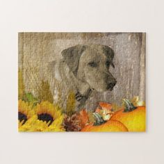 Harvest Labrador Retriever Jigsaw Puzzle - photo gifts cyo photos personalize