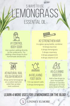 Lemongrass essential oil lends itself well for many uses for personal care products. It is actually from the grass family and is commonly used to make tea and as a flavoring in many Asian dishes. Here are more ways to use this go-to essential oil! Geranium Essential Oil, Doterra Essential Oils, Young Living Essential Oils, Essential Oil Diffuser, Essential Oil Blends, Eucalyptus Essential Oil Uses, Lemongrass Essential Oil Uses, Cedarwood Essential Oil Uses, Peppermint Essential Oil Uses